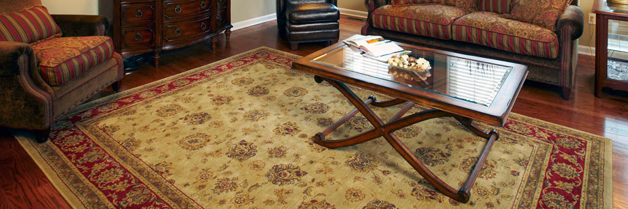 Tampa St Petersburg rug carpet cleaning